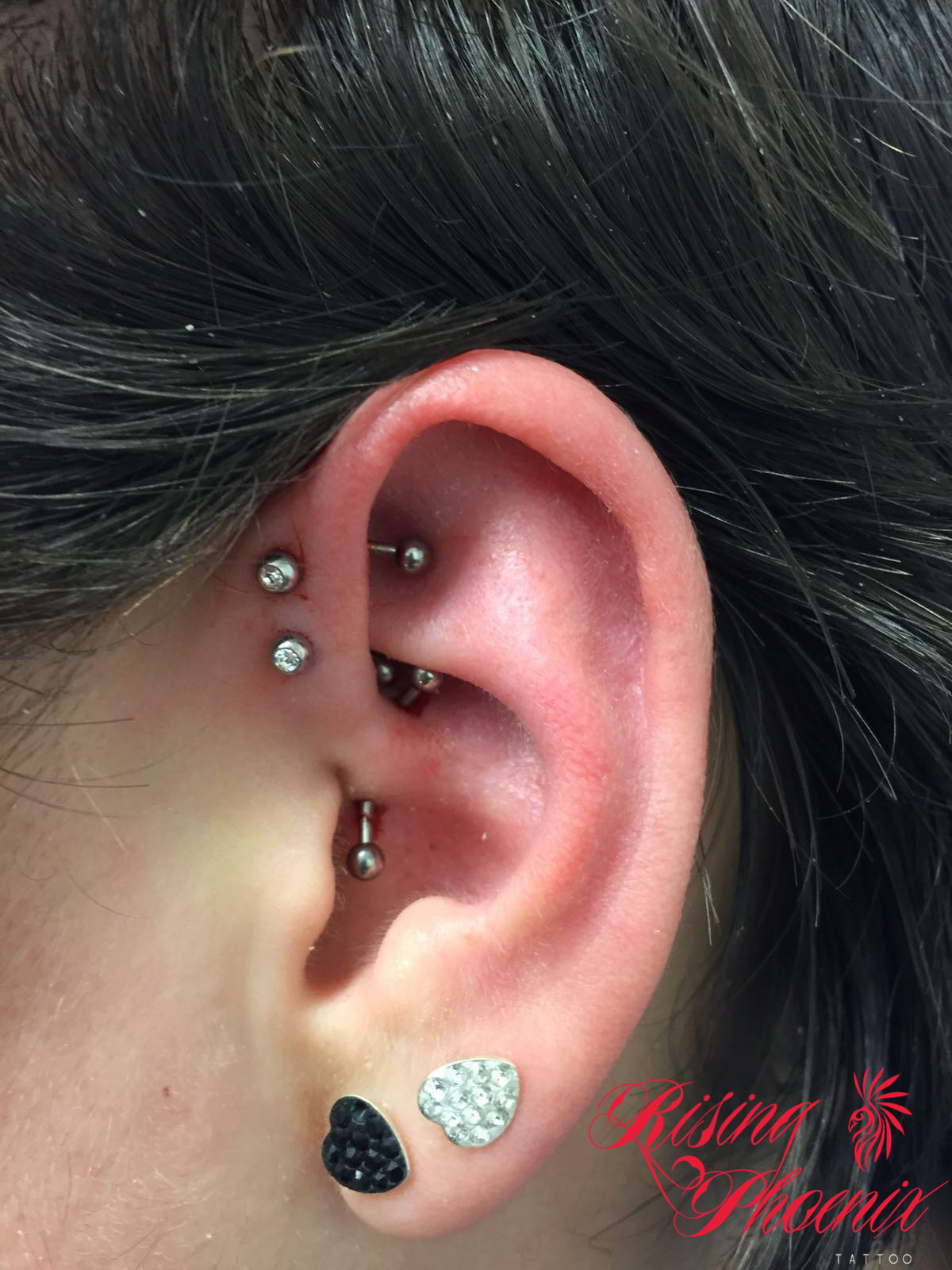 Fabelhaft Anti-Helix Piercing - Rising Phoenix Tattoo XO12
