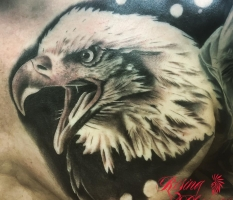 B&W Eagle Chest Piece