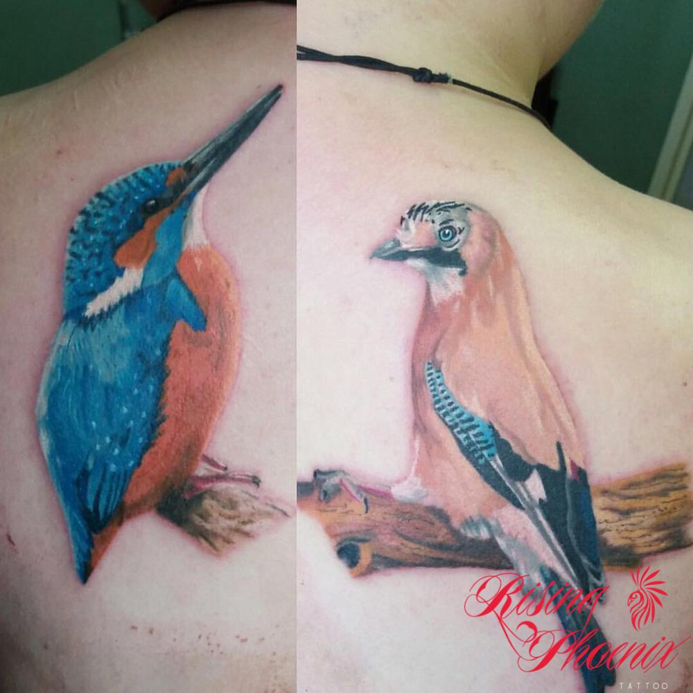 Detailed Watercolour Birds