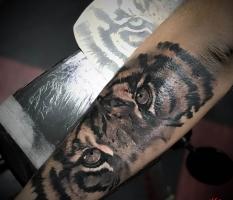 Realistic Black & White Tiger