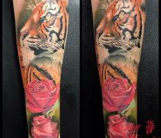 Tiger & Roses