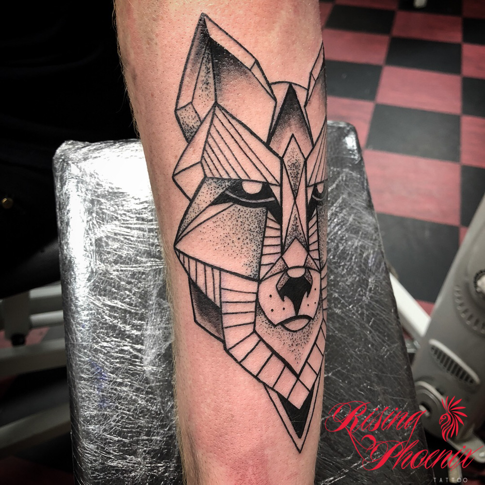 Aztec Fox