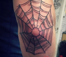 Elbow Web