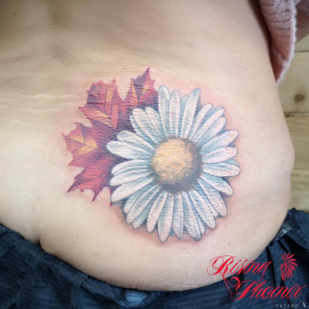 Maple Sunflower
