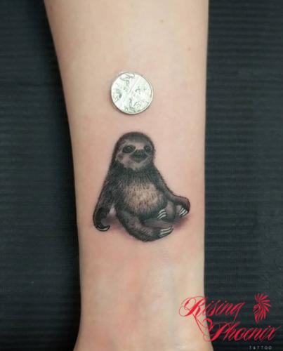 Tiny Sloth